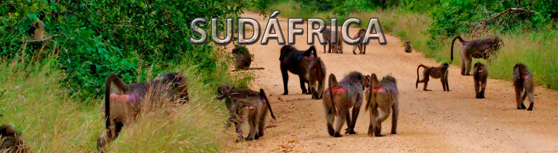 viaje organizado Sudáfrica
