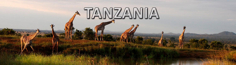Viaje organizado a Tanzania